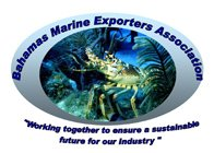 Bahamas Marine Exporters Association